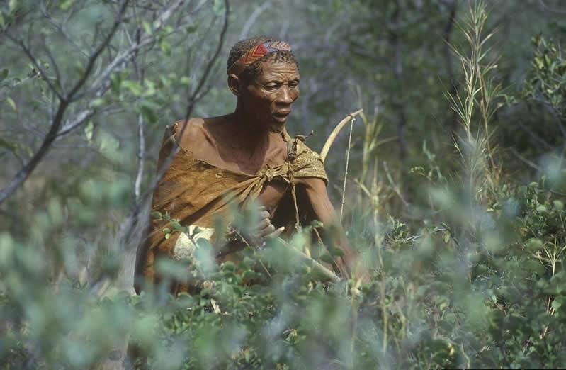 Bushman - makadikadi - Botswana - JGS