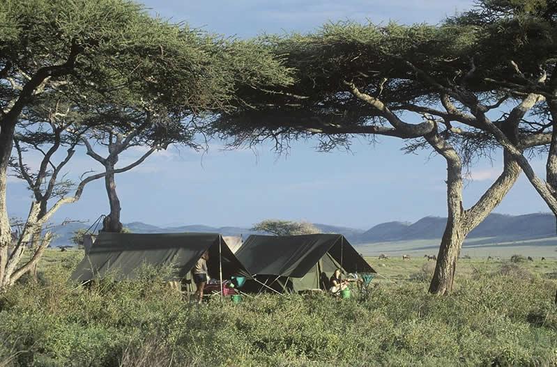 Nomads Fly Camp - Sth Serengeti NP - Tanzania - JGS